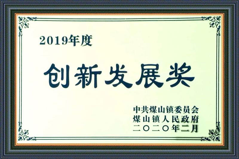2019年度创新发展奖